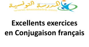 Excellents exercices en Conjugaison français