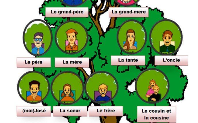 شجرة العائلة بالفرنسية arbre généalogique